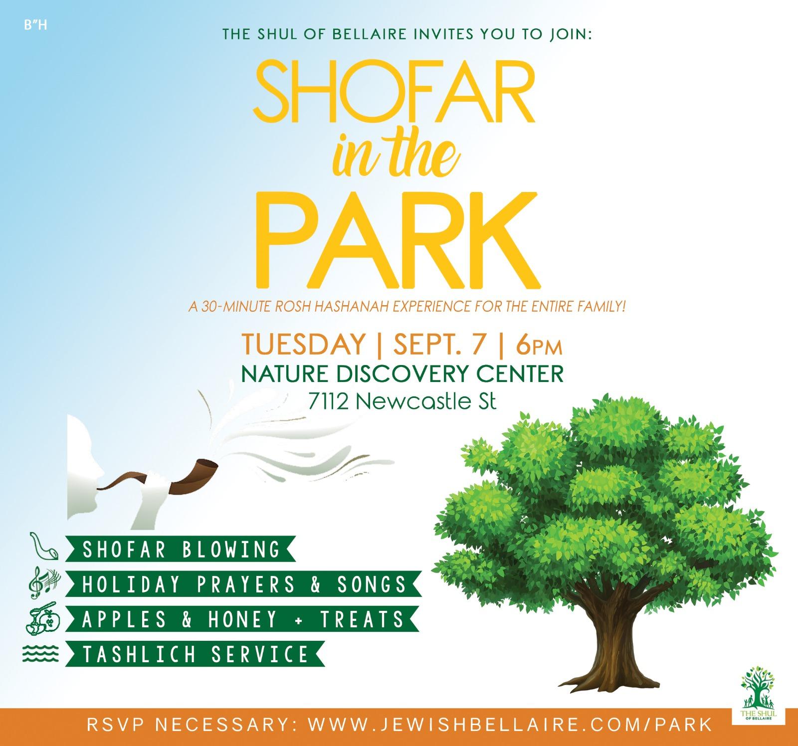 Shofar in Park flyer.jpg